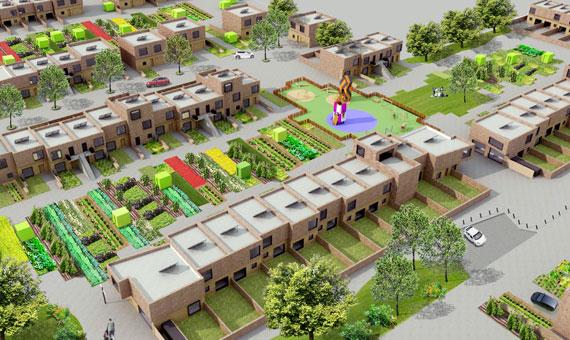 Innovative Suburban Housing